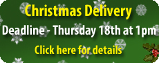 Festive Shipping details