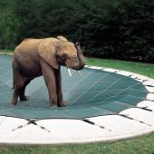 Strength, no other safety cover in the world has been tested by bubbles the Elephant!